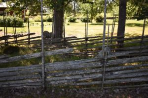 traditional spruce fence