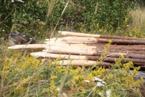 peeled spruce poles