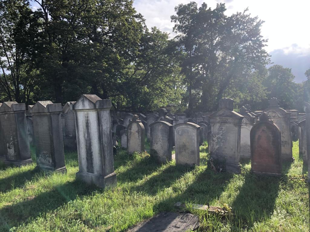 This is a view of the Jewish cemetery on which the European Heritage Volunteers worked